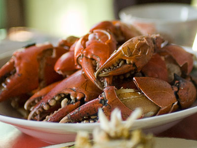 eating crabs with simple dip