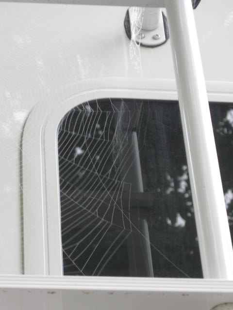 spider webs on the fifth-wheel