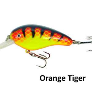 Predox-little Joe orange tiger