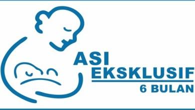 Photo of ASI Eksklusif: Susu yang Tak Tergantikan