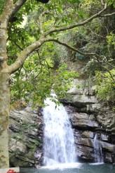 Iron wood waterfall