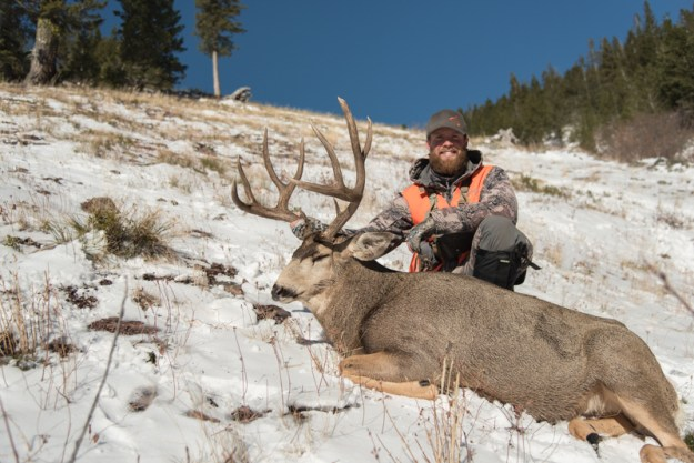 mule deer, montana, hsm, ammo, hunting shack, sitka gear, montana, wild, buck, vortex optics, rifle
