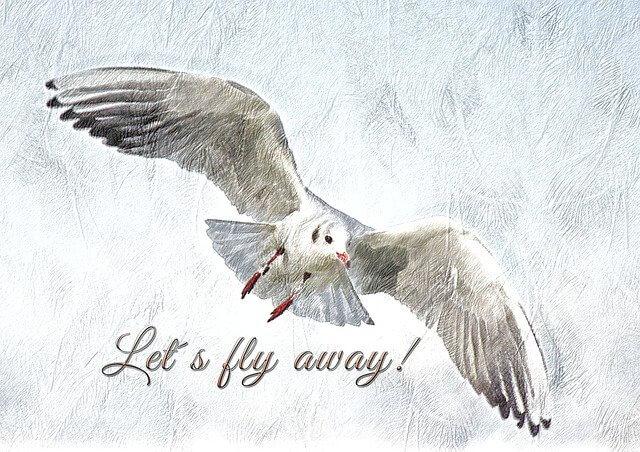 Het ontsnappingsplan, als je niets meer te verliezen hebt, alles kwijt bent en geen kant op kan.