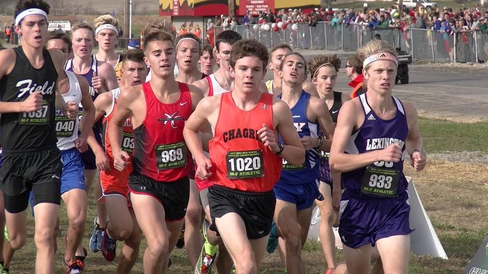 Image result for amelia high school cross country