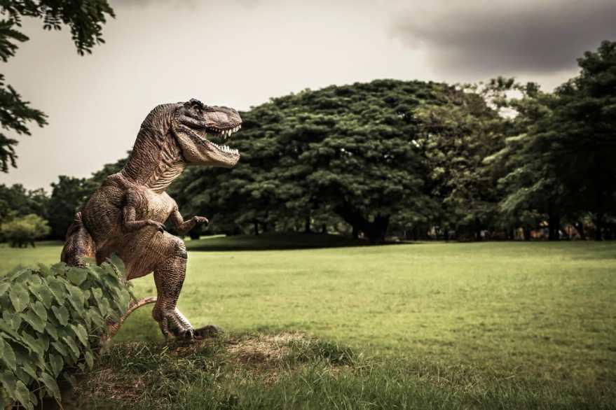 【ゾッとする雑学】たったの30秒が恐竜とヒトの進化の境だった