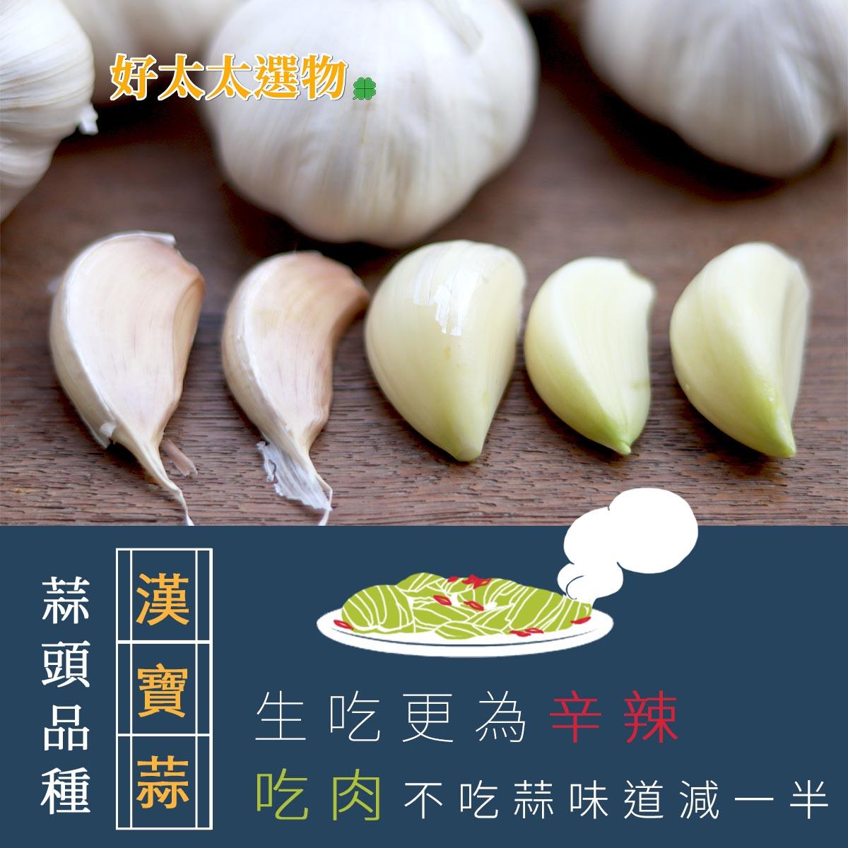「寶漢蒜」這的經典的品種,現在不多見了。