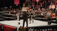 Royal_Rumble_2015 (23)