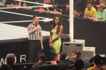 Royal_Rumble_2015 (26)