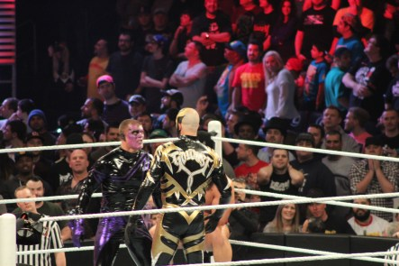 Royal_Rumble_2015 (75)
