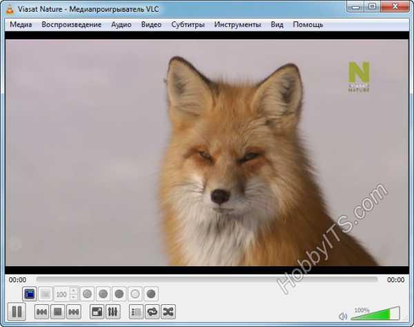Rustv Player For Mac Os
