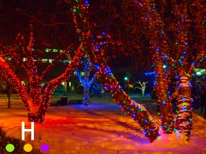City Hall Park lights, Red Deer