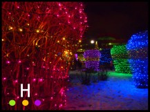 Christmas Lights Red Deer City Hall Park