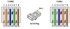 Remate!!, Bolsas De 25pzas Conectores Rj45, Cat5e  Bs 0,40 en Mercado Libre