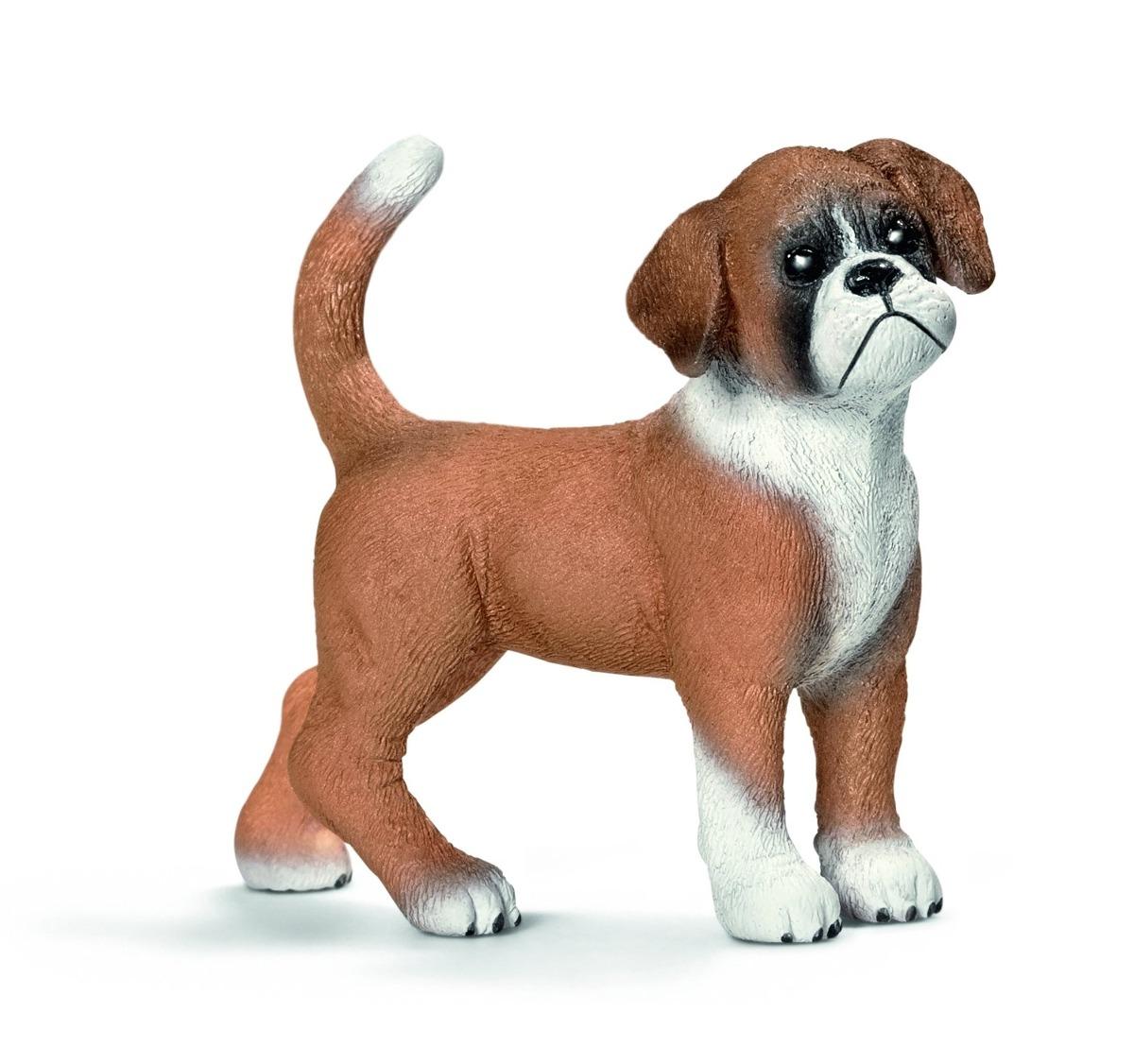 Color Es Del Perro Boxer