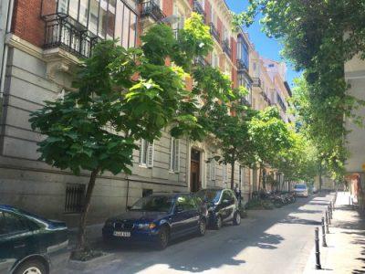 elblogdeceleste- calle orfila