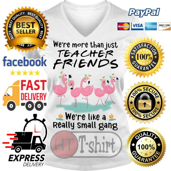 Flamingo we're more than just social worker friends we're like a really small gang V-neck t-shirt
