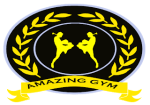 Amazing Muay Thai Gym & Fitness