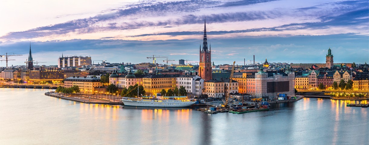 Contact day: the Swedish market