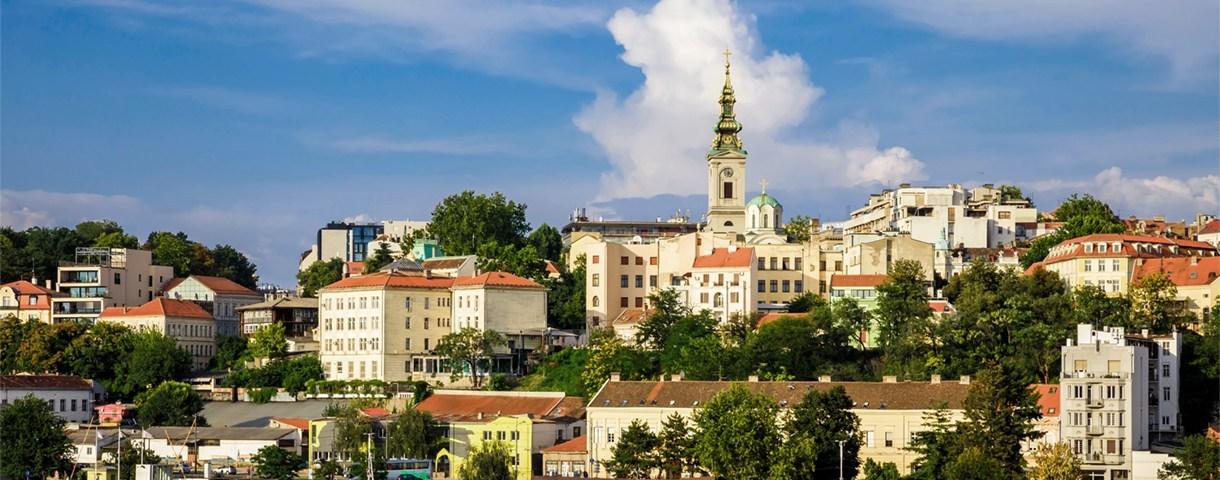 Contact day: de Servische markt