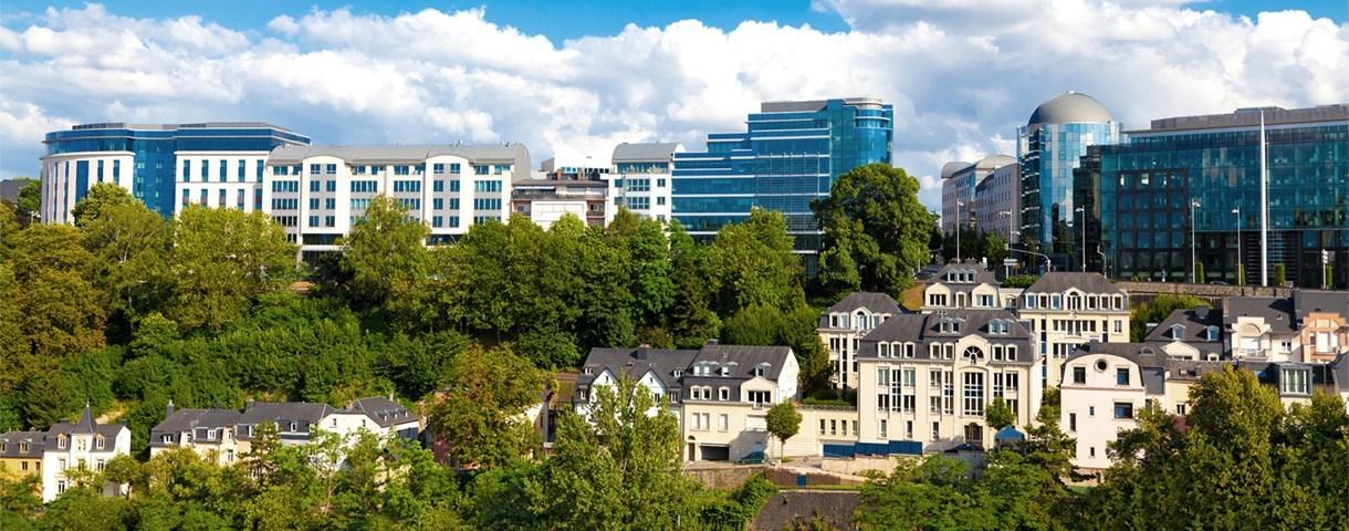 Contact day: de Luxemburgse markt