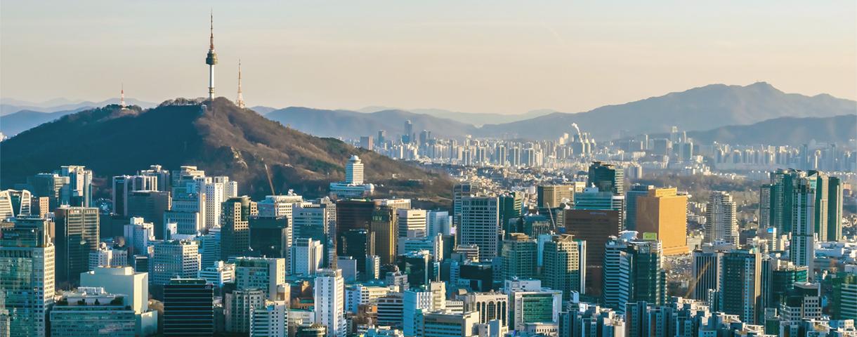 Contact day: the Korean market