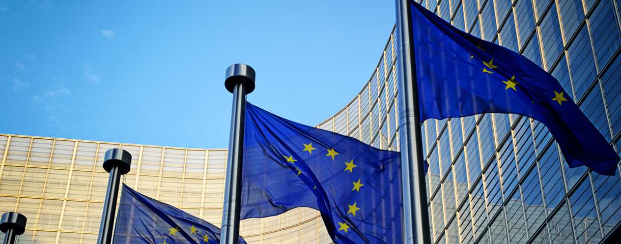 Contact day: European Institutions and international organisations