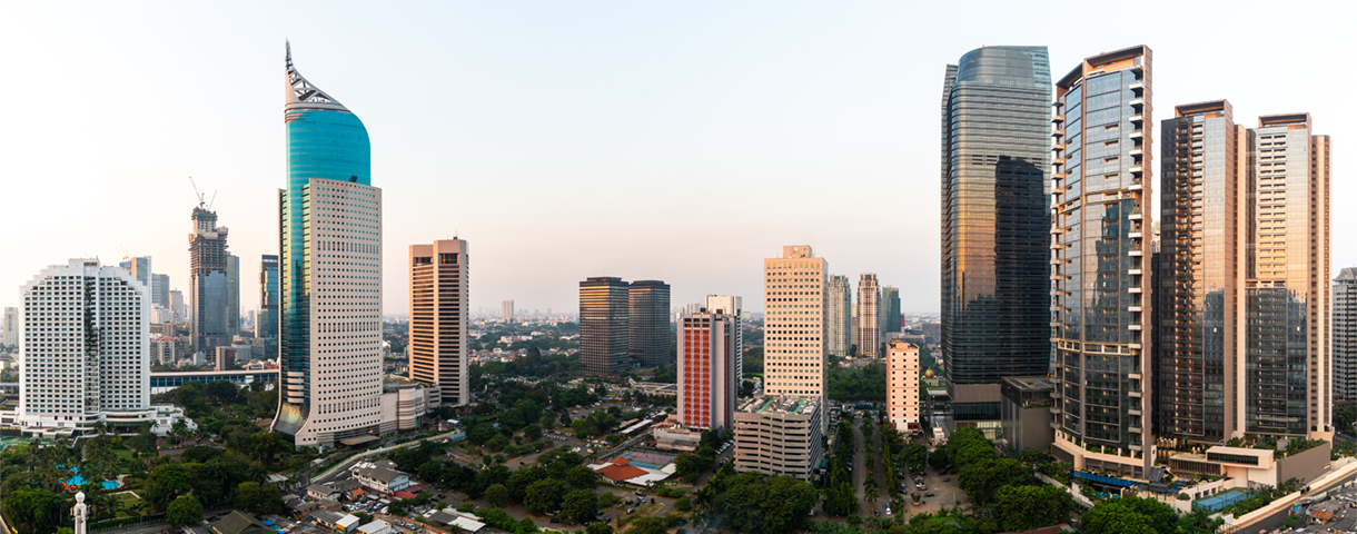Contact day: the Indonesian market
