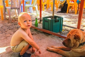 Dog Friendly Places in Hong Kong