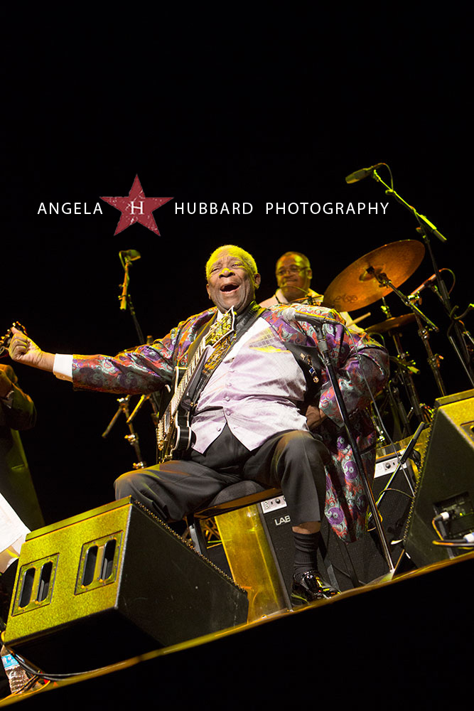 rock and roll photographer angela hubbard