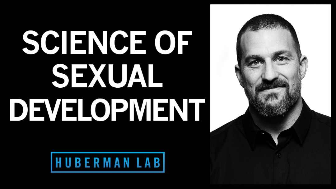 Huberman Lab Podcast Episode 14 Featured Image