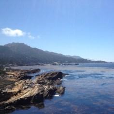 Point Lobos (1)