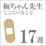 drume17