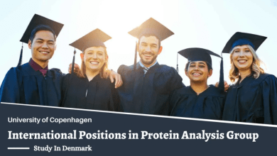 Photo of International PhD Positions in Protein Analysis Group, Denmark