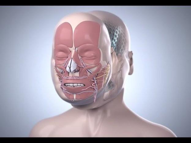 عملية زرع الوجه لمدة 25 ساعة