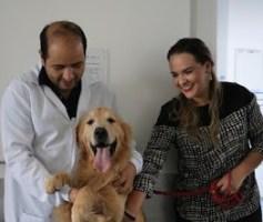 Elessandra Carneyro, Embaixadora da Fundação ENAC  participa de projeto que leva cachorros para alegrar pacientes no HUGO