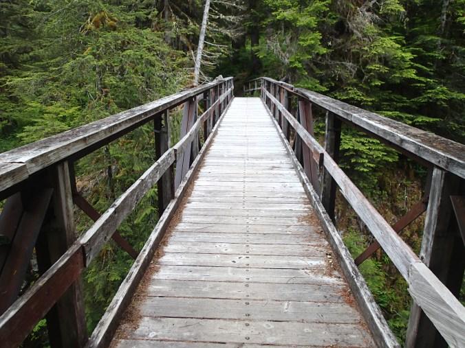 Hoh River Bridge