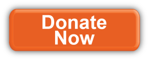 button-donate-now