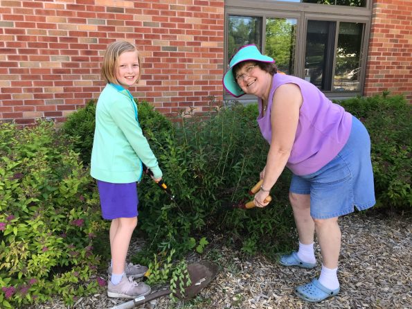 Grandmother and granddaughter work together trimming shrubs.