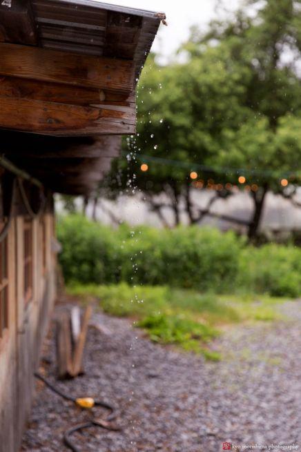 kmp20170604-010_blooming-hill-farm-wedding