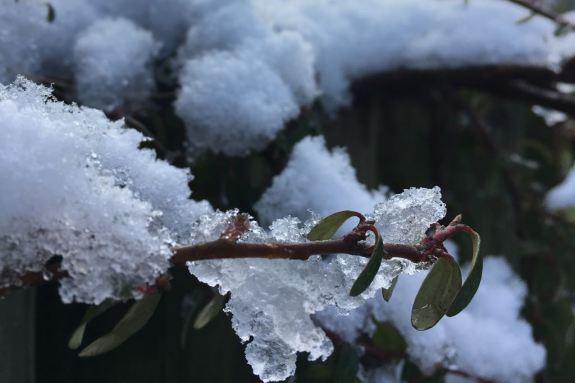 Winterimpressionen 9a (6)