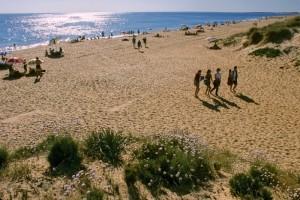Las playas de Punta Umbría mantienen su riqueza natural.