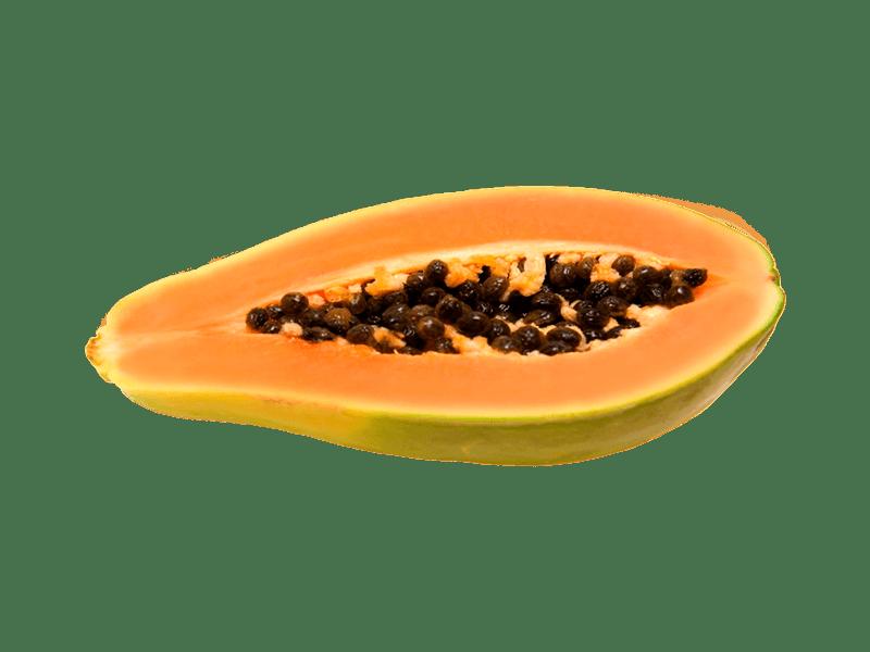 Papaya Huerta Tropical