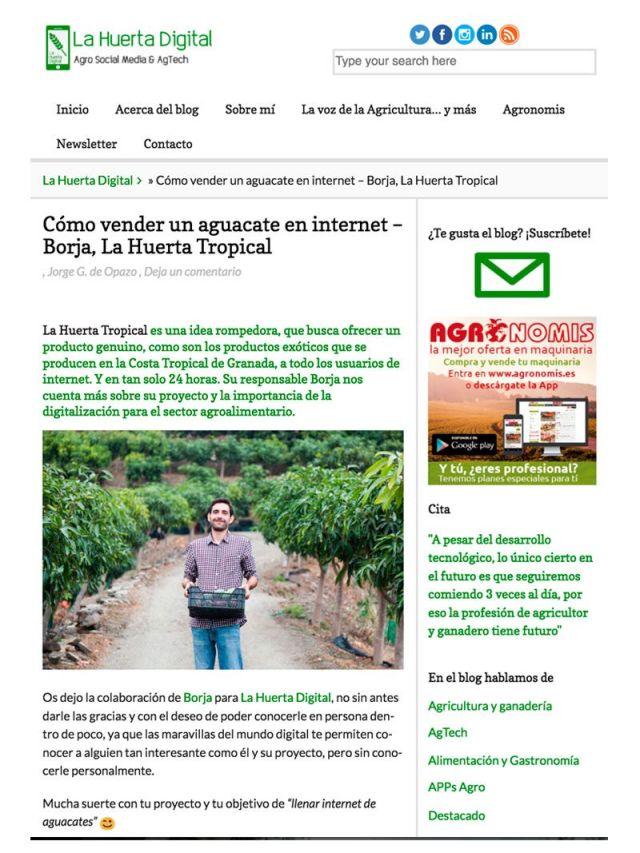 Artículo Blog Huerta Digital Cómo vender un aguacate por Internet