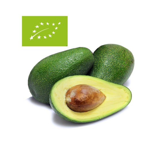 comprar aguacate fuerte ecológico bio costa tropical granada málaga