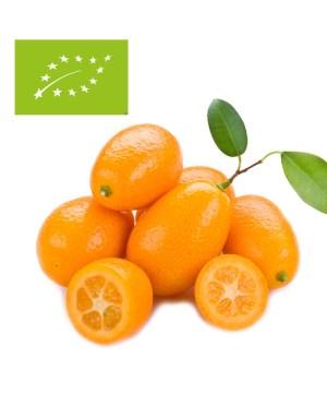 comprar kumquat ecológico