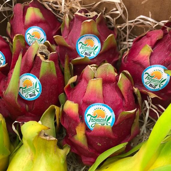 pitaya fruta del dragon carne roja