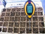 Temperatura de nuestro semillero
