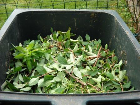 material de poda en el cajón de compost