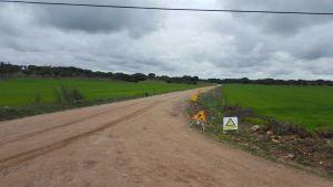 caminoverdel5