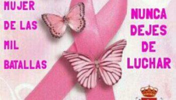 Resultado de imagen de imagenes dia mundial del cancer de mama